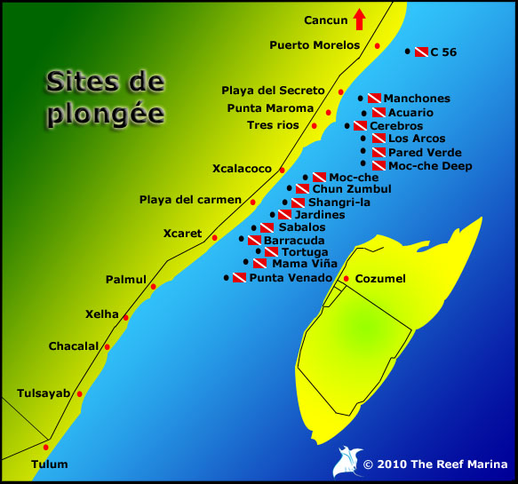 Sites de plongées à Playa del Carmen